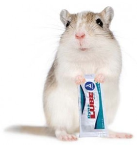 mouse lube crop
