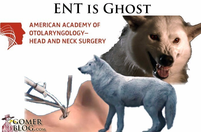 Otolaryngology - ENT [Ghost, Jon Snow's Dire Wolf] - In an emergency you go for the throat