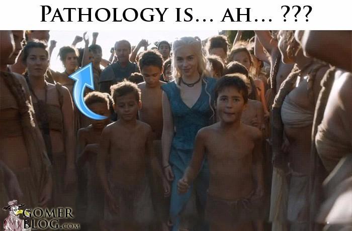 "<a href=""http://gomerblog.com/category/pathology/"" srcset="