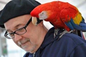parrot on shoulder