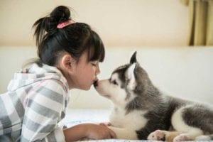 puppy pediatrics