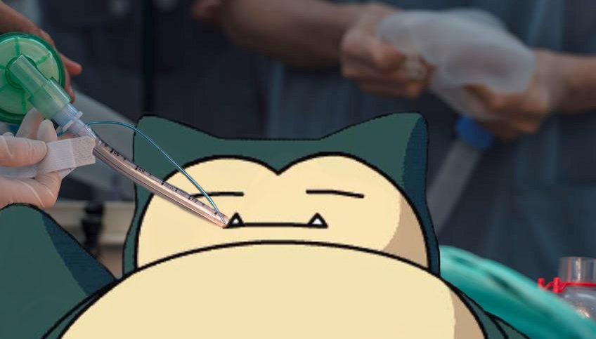 Snorlax, Pokémon