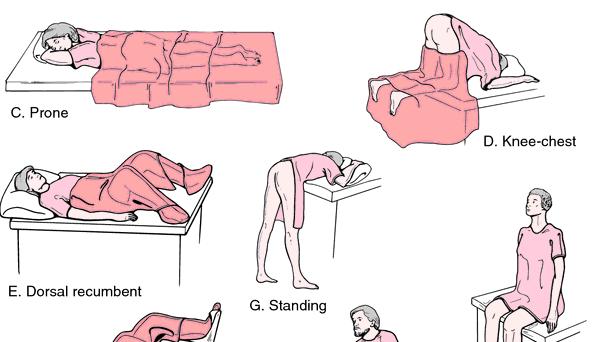 sex position trivia