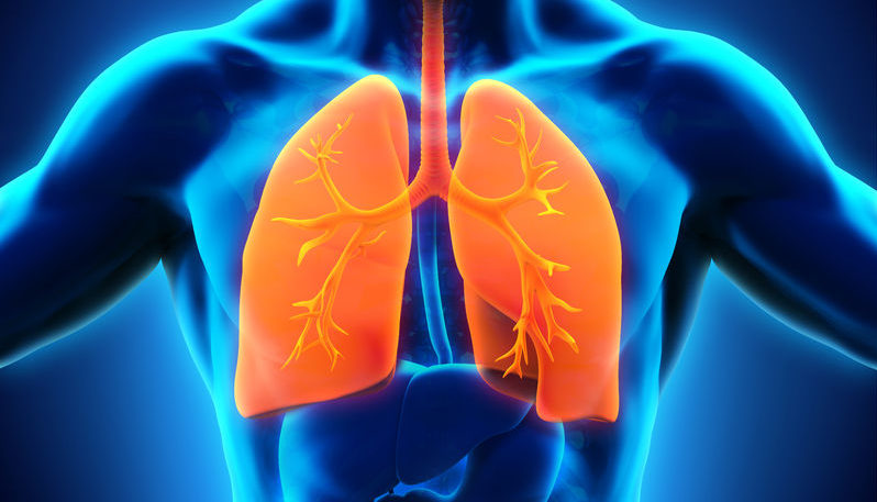 respiratory system secedes declares independence from human body