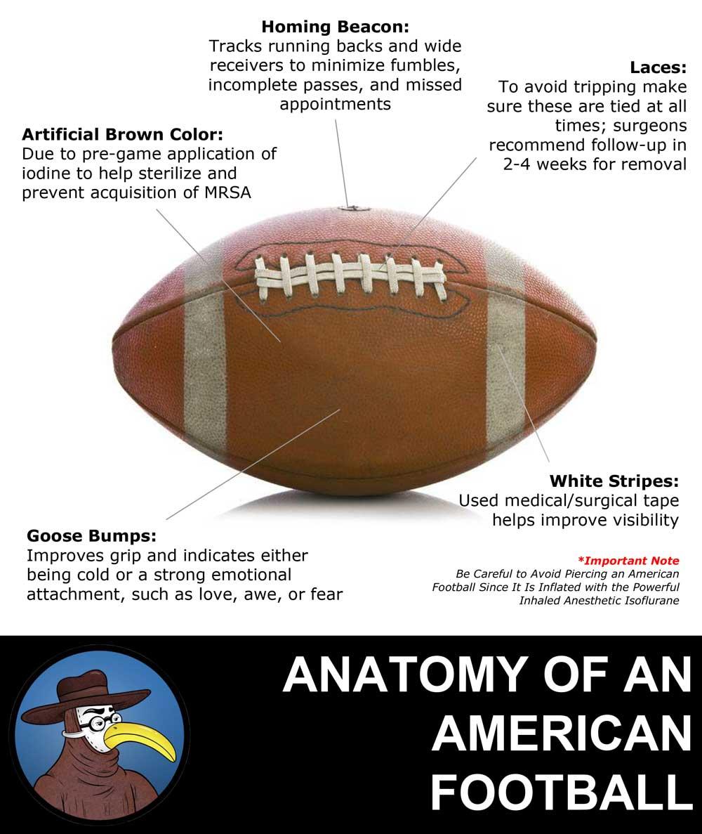 Anatomy of an American Football | GomerBlog