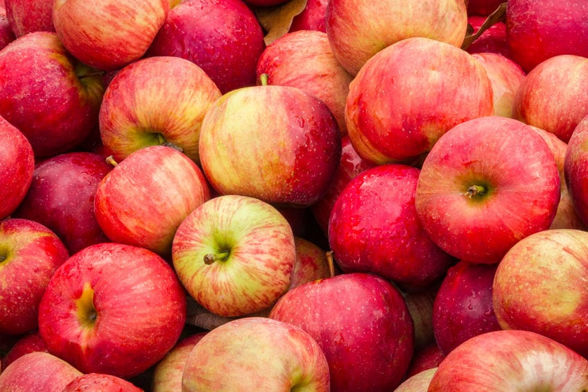 Statin-Infused Apples Daily to Keep Even More Doctors Away